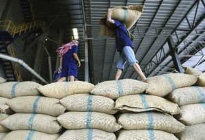 Sản lượng cà phê toàn cầu niên vụ 2012/2013 sẽ tăng lên 144,6 triệu bao