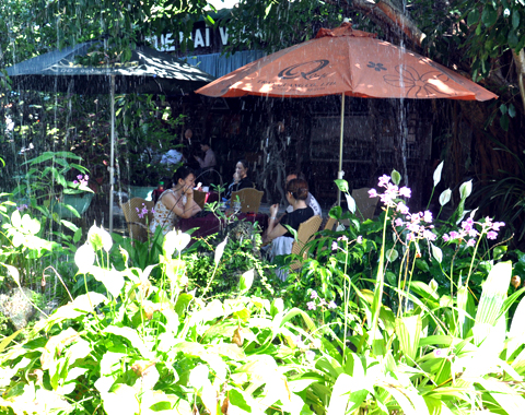 Làng cà phê 400 tuổi giữa thành phố