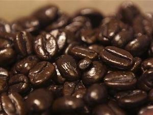 Sản lượng cà phê giảm mạnh do nắng hạn