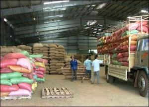 Bản chất việc găm giữ hàng và tình hình giá cà phê hiện nay
