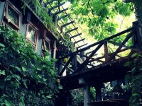 Quán Cafe Trầm: Trầm lặng và sâu lắng