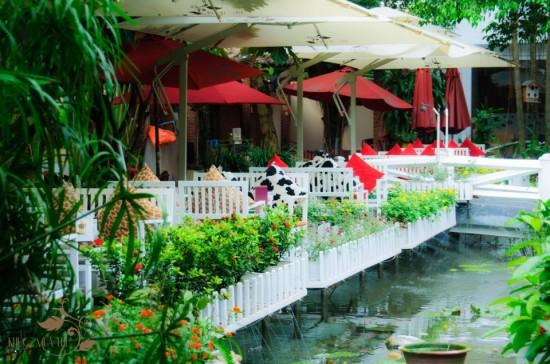 Cafe Khúc Mùa Thu – Giao Hòa Với Thiên Nhiên