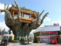 Những quán cà phê kỳ lạ trên thế giới